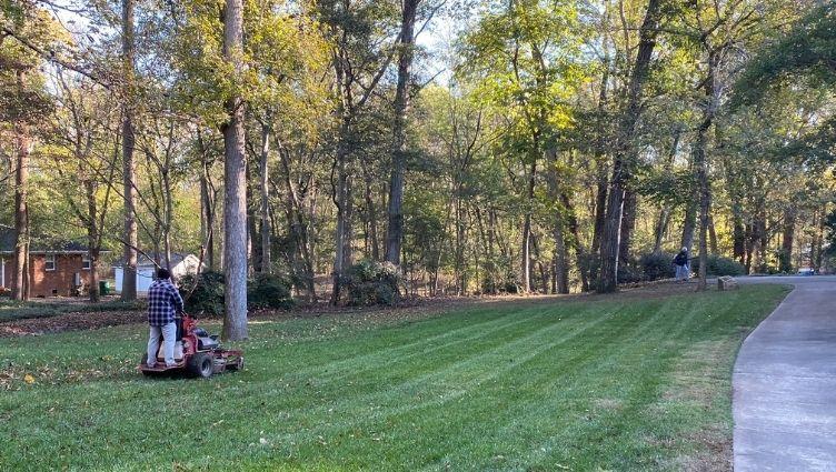 Grass Cutting Mint Hill NC