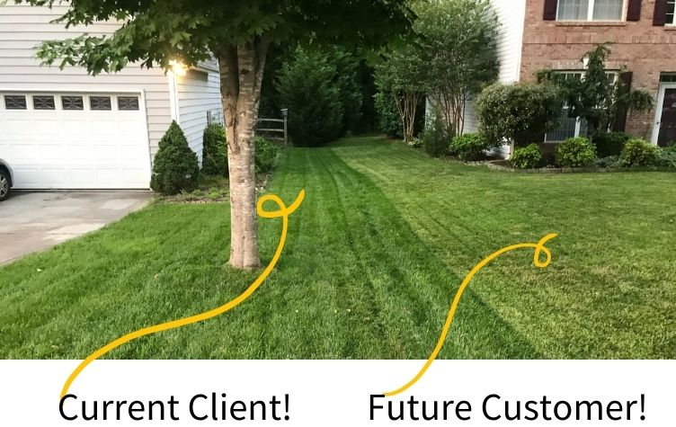 Professional Lawn Care Difference
