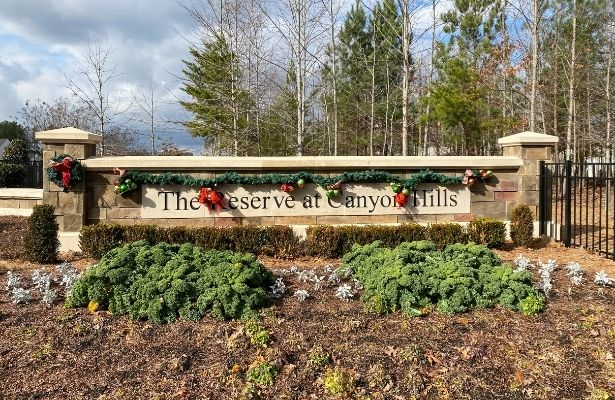 The Reserve at Canyon Hills-Charlotte 28215